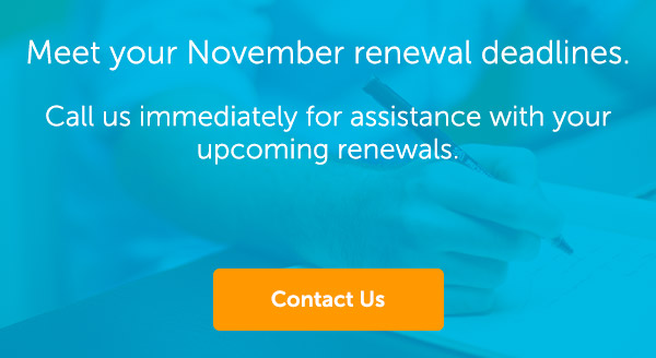 november-renewal-deadlines